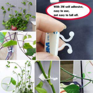 Attache auto-adhésive pour plantes grimpantes, fixation attachée, crochet pour boucle de vigne, plantes de jardin, Clips de vigne