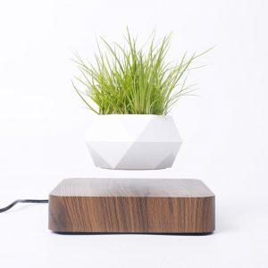 Pot à bonsaï à lévitation en l'air et rotation magnétique, bac à plantes, jardinière, fleurs en suspension pour décor de bureau ou à domicile
