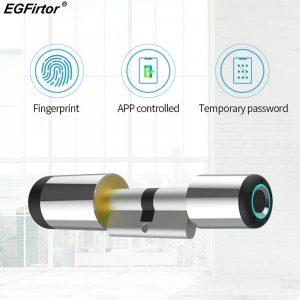 Serrure de porte intelligente Wifi, cylindre électronique, application Bluetooth, serrure biométrique Anti-vol à empreintes digitales, serrure de sécurité intelligente